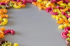 Pastas crudas coloridas Imágenes de archivo libres de regalías