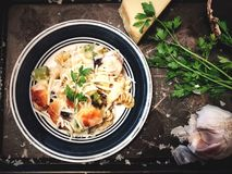 Pastas del alfreado del pollo Fotografía de archivo