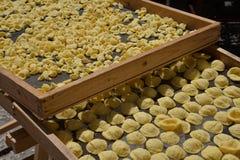 Pastas hechas a mano de Orecchiette Plato típico de Bari, Apulia, Italia fotografía de archivo libre de regalías