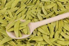 Pastas italianas con espinaca imagen de archivo