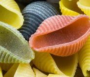 Pastas italianas crudas del conchiglie Foto de archivo