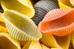 Pastas italianas crudas del conchiglie Imagen de archivo