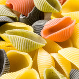 Pastas italianas crudas del conchiglie Fotografía de archivo libre de regalías