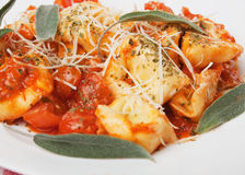 Pastas italianas del tortellini Imagenes de archivo