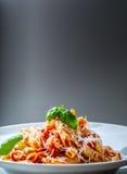 Pastas Penne con la salsa, el queso parmesano y la albahaca boloñeses del tomate en una bifurcación Alimento mediterráneo Cocina  Imagen de archivo libre de regalías
