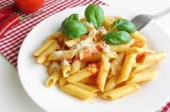 Pastas Penne Tomato Sauce Basil Parmesan Foto de archivo libre de regalías