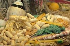 Pastas secadas Foto de archivo libre de regalías