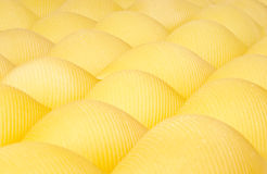 Pastashells in rows. Pasta shells in a row Stock Images