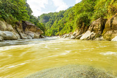 Pastaza flod i Ecuador royaltyfria foton