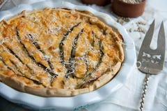Pastei met kabeljauw, zalm, tomaten, kaas en de lenteui stock afbeelding