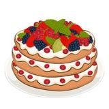 Pastei met room en bessen, vectortekening, geschilderd dessert Laagcake met aardbei, braambessen, bes en kiwifruit op vector illustratie