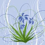 Pastel background with blue snowdrops. Vector Stock Photos