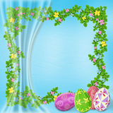 Pastel background with colored eggs Stock Image