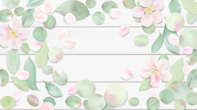 Pastel background with flower leaves. Royalty Free Stock Images
