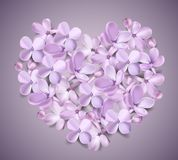 Pastel background with lilac flowers. Soft pastel color floral 3d illustration on violet background. Purple Lilac flowers and petals heart shape watercolor Royalty Free Stock Photos