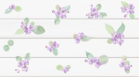 Pastel background with lilac flowers. Royalty Free Stock Photography