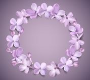 Pastel background with lilac flowers. Royalty Free Stock Image