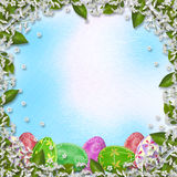 Pastel background with multicolored eggs and Sakura Stock Images