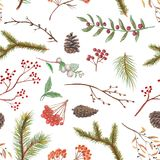 Pastel background pattern with cones, twigs and berries. Pastel seamless background pattern with spruce branches, cones, twigs and berries Royalty Free Stock Photos