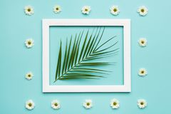 Pastel Blue Candy Colours Background. Flat lay minimalism concept with palm leaf and picture frame mock up. Stock Image