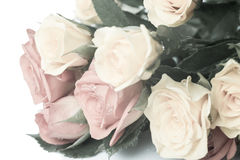 Pastel bouquet of gentle toned roses with drop Royalty Free Stock Images