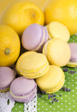Pastel color macaroons Stock Photos