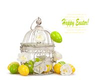 Pastel colored eggs and beautiful flowers on white background Stock Photos