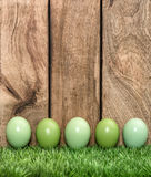 Pastel colored eggs in green grass Easter holiday Royalty Free Stock Image