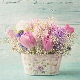 Pastel colored flower. In a vase Stock Photo