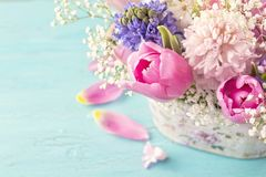 Pastel colored flower. In a vase Royalty Free Stock Photos