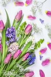 Pastel colored flower stock photography