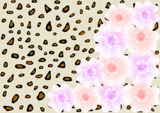 Pastel-colored flowers on animal print with large copy space Royalty Free Stock Photo