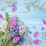 Pastel colored flowers Stock Photo