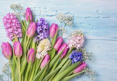 Pastel colored flowers. On a blue background Stock Photo