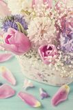 Pastel colored flowers. On a blue background Royalty Free Stock Image