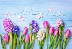 Pastel colored flowers. On a blue background Royalty Free Stock Photos