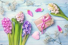 Pastel colored flowers and a gift box. On a blue background Royalty Free Stock Photo