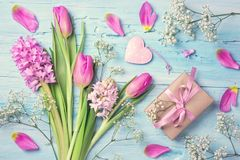 Pastel colored flowers and a gift box. On a blue background Stock Images