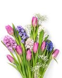 Pastel colored flowers. Pastel colored flower on a white background Royalty Free Stock Photography