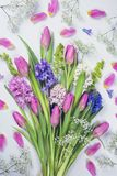 Pastel colored flowers Stock Image