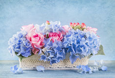 Pastel colored flowers Royalty Free Stock Image