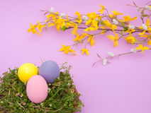 Pastel colored hand painted Easter egg shells Royalty Free Stock Photos