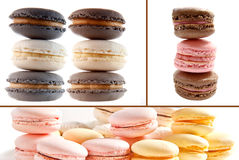 Pastel colored macaroons on white background Stock Photography