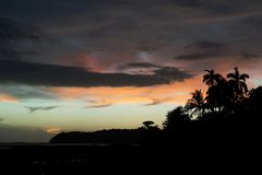 Pastel colored sunset sky with black palm and tropical vegetation silhouettes on the foreground Stock Photography