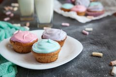 Pastel coloured cupcakes for Easter Stock Photo