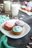 Pastel coloured cupcakes for Easter Royalty Free Stock Photo