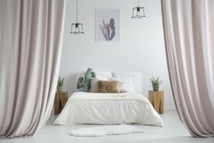 Pastel curtains in rustic bedroom. With white rug and cacti on wooden stools next to king-size bed stock photos