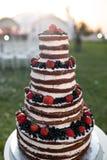 Pastel de bodas con gradas multi redondo con la esponja, la crema, el atasco y bayas en una base circular Arándanos frescos y Fotos de archivo libres de regalías