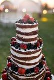 Pastel de bodas con gradas multi redondo con la esponja, la crema, el atasco y bayas en una base circular Arándanos frescos y Foto de archivo libre de regalías