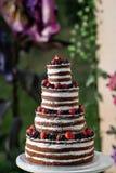 Pastel de bodas con gradas multi redondo con la esponja, la crema, el atasco y bayas en una base circular Arándanos frescos y Foto de archivo